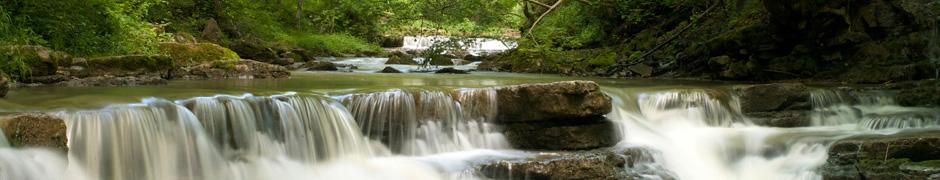 Fluss im Wald (Schlichemklamm)
